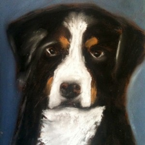 Custom Pastels of your Pets
