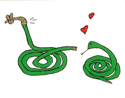 Hose/Snake